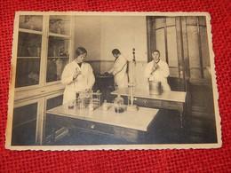 """ZAFFELARE  -  Midd. Landbouwhuishoudschool  """" Spes Nostra """" Zusters Van Liefde  - Laboratorium - Lochristi"""