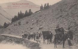 GAVARNIE  65 ( CARAVANNE DE MULETS )  PORTEURS DES BAGAGES A L' HOTEL DU CIQUE  ANE ANES 1912 - Lannemezan
