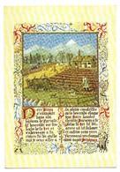 La Cerdagne N° 22 La Culture Au Moyen-Age Perpignan Edition Orient Toulouse - Histoire