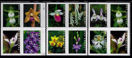 USA, 2020, 5445-5454, Wild Orchids, Block Of 12 With Booklet Plate No And Booklet Cover, Forever, MNH, VF - United States