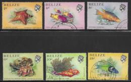 Belize Scott # 700,702-6 Used Sealife, 1984 - Belize (1973-...)