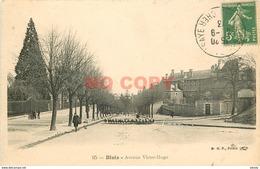 SL 41 BLOIS. Troupeau De Moutons Avenue Victor-Hugo 1913 - Blois