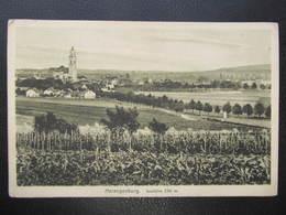 AK HERZOGENBURG 1915 ////  D*43612 - Herzogenburg