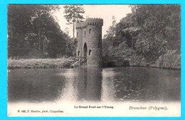 CPA PK BRASSCHAET (Polygone) BRASSCHAAT : Le Grand Pont Sur L'Etang - N 488 F. Hoelen, Phot. Cappellen - Brasschaat