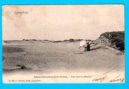 CPA PK CALMPTHOUT KALMTHOUT - Iets Schilderachtig In De Duinen - Circ. 1905 - F. Hoelen Phot. Cappellen - 2 Scans - Kalmthout
