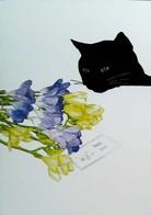 CPM CHAT NOIR Illustrateur Ou Illustration BY SUE BOETTCHER (BLACK CAT Postcard Illustration Or Drawing) - Gatos
