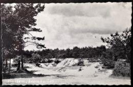 "Netherlands, Circulated Postcard,  ""Nature"", 1963 - Hattem"