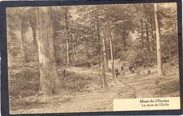 MONT-de-L'ENCLUS - La Route De L'Enfer - Kluisbergen