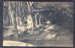 5 MONT-de-L'ENCLUS - Verss La Tour - Kluisbergen