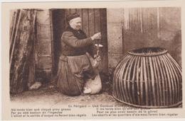 En Périgord, Une Gaveuse D'oie - France