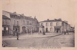 D85  PALLUAU  La Place De La Fontaine Et Route Des Sables  ............ Carte Peu Courante - Challans