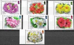 BRITISH VIRGIN ISLANDS, BVI, 2019, MNH, PLANTS, DEFINITIVES, FLOWERS, FRANGIPANI, HIBISCUS, OLEANDER, BOUGAINVILLEA, 7v - Plants