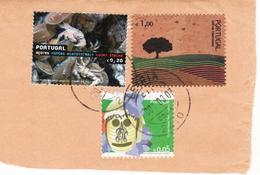 Portugal , 2006 , Cork Stamp , Timbre Liége , Selo De Cortiça , Used On Fragment - Bäume