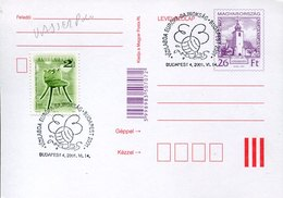 53238 Hungary, Special Postmark Budapest 2001   Water Polo  Pallanuoto - Water Polo