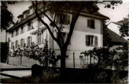 Cressier - Les Cyclamens - NE Neuchâtel