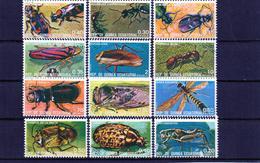 ++ Serie Completa  De Guineia Ecuatorial  Año 1974 Usados  Insectos - Äquatorial-Guinea