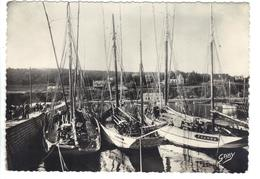 CPSM 29 Bretagne Finistère MORGAT Bateaux Thonniers Dans Le Port Beau Plan Années 1960 Fishing Boats Tuna - Morgat