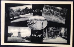 """Netherlands, Uncirculated Postcard,  """"Landscapes"""", """"Nature"""", """"Cities"""", """"Nunspeet"""" - Nunspeet"""