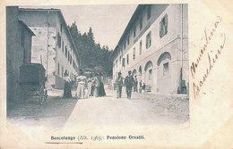 ITALIA - BOSCOLUNGO (pistoia) - Pensione Orsatti, Animata, Viag..1902 - 2020-125 - Other Cities