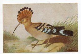 CPA ANIMAUX . OISEAUX . LE  HUPPE PUPUT  . ILLUSTRATEUR DELAPELSIER - Birds