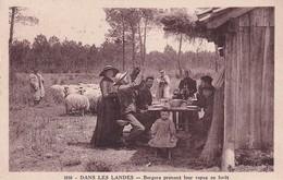 D40  Dans Les Landes Bergers Prenant Leur Repas En Forêt - Unclassified