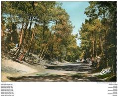 CPSM 44 SAINT BREVIN. Une Route En Forêt 1965 - Saint-Brevin-les-Pins