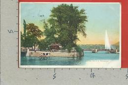 CARTOLINA VG SVIZZERA - GENEVE - Ile J. J. Rousseau - 9 X 14 - 1907 - GE Geneva