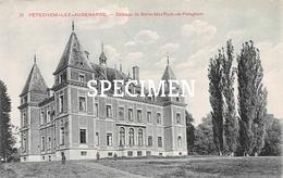 21 Château Du Baron Max Pyck De Pethegem - Petegem Aan De Schelde - Wortegem-Petegem
