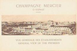 Marne        713        Epernay.Champagne Mercier.Vue Générale Des établissements - Epernay