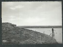 Somme. Noyelles Sur Mer , Gabion Demeyer En Baie De Somme - Noyelles-sur-Mer