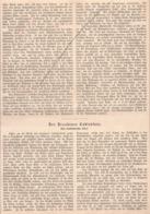 457 Dresden Dresdener Totentanz Skizze Artikel Mit 1 Bild 1881 !! - Other