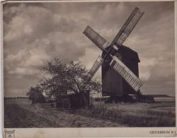 Old Photo Of Old Belgium Mill, Oude Molen , Moulin Belgique Paypal Ok - Non Classés