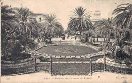 TUNIS PARTERRE DE L AVENUE DE FRANCE - Marrakech