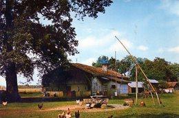 Métiers Anciens - Traditions - Paysan - Ferme Gasconne Avec Puits à Balancier - Paysans