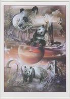 Thierry Mordant 2001 / 2007 Tirage 1000 Ex. Hommage Aux Pandas Panda Faune Fauna Carte Postale Postcard - Ours