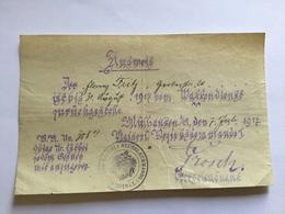Document Allemand Hôpital Militaire De Mulhouse 1917 Ausweis 1914-18 - 1914-18