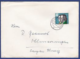 Brief Einzelfrankatur MiNr. 325 (br9735) - [7] Federal Republic