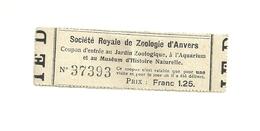 1 Ticket Ancien. Société Royale De Zoologie D'ANVERS (Belgique).  Voir Description - Tickets D'entrée