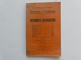 FASCICULE - SCHEMAS D'ANATOMIE : Membres Inférieurs - CL. MONOD & B. DUHAMEL - Encyclopaedia