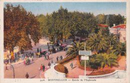 34-MONTPELLIER-N°T2539-F/0183 - Montpellier