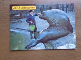 Zoo Van Antwerpen (dierentuin) -> Onbeschreven - Antwerpen