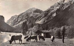 73-PRALOGNAN LA VANOISE-N°T2557-A/0151 - Pralognan-la-Vanoise