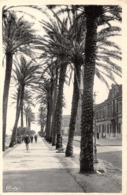 R342528 Cim. La Calle. Constantine. La Promenade Vers La Marine. Combier Imp. Macon - Cartes Postales