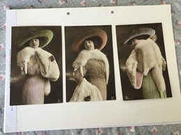 3 CPA Femmes Et Mode Fourrure D'hermine Et Chapeau - Women