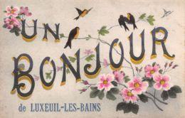 70-LUXEUIL LES BAINS-N°T2561-D/0331 - Luxeuil Les Bains