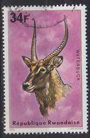 RUANDA RWANDA [1975] MiNr 0679 ( OO/used ) Tiere - Rwanda