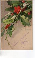 Illustrée Signée C. KLEIN : Houx Dans La Neige - Klein, Catharina
