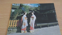 CSM - MAIKO - KYOTO - Nagoya