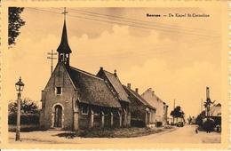 Beersse De Kapel St Cornelius - Beerse