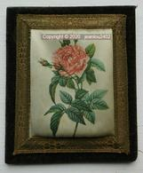 PETIT CADRE AVEC ROSE EN TISSUS - Bloemen & Planten